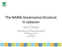 The NAMA governance structure in Lebanon