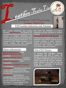 Leather Sector flyer