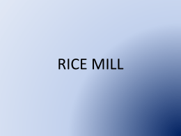 RICE MILL - new industry