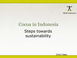 Cocoa in Indonesia - Steps towards sustainability