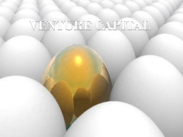 VENTURE CAPITAL - ManagementParadise.com
