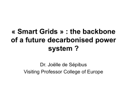 Smart grids - World Trade Institute