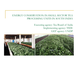 UNDP-GEF Experiences in Energy Efficiency