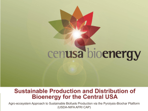Sustainable Production and Distribution of Bioenergy for the Central