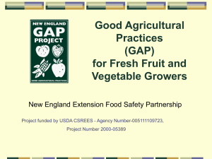 GAP and Food Security