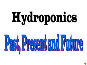 Hydroponics Past, Present and future