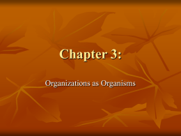 Chapter 3: Organizations as Organism