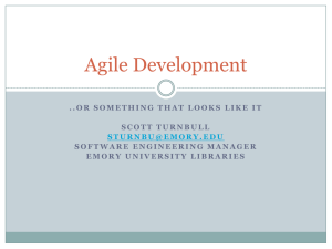 Agile Development ..or something that looks like it