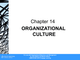 Chapter 14 - Cengage Learning