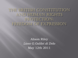 The British constitution and human rights protection