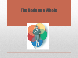 The Body as a Whole