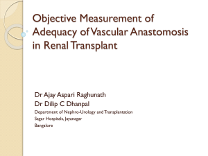 Objective Measurement of Adequacy of Vascular Anastomosis in
