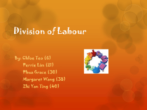 Division of Labour - divisionoflabours1d2012