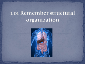 Structural Organization and Body Systems obj 1 PP 08282014