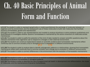 Ch. 40 Basic Principles of Animal Form and Function note