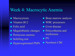 PowerPoint Presentation - Week 3: Macrocytic Anemia