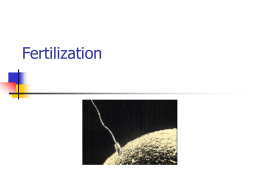 Fertilization and EarlyEmbryo Development