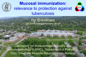 Mucosal Immunization, relevance to protection against tuberculosis