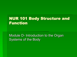 NUR 101 Body Structure and Function