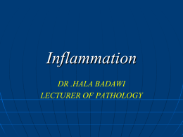 Inflammation - BMC Dentists 2011