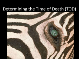 Time of Death - PlazaDeals.net