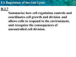 5.3 Regulation of the Cell Cycle