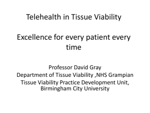 Telehealth in Tissue Viability Excellence for every patient every time