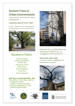 Ancient Trees in Urban Environments