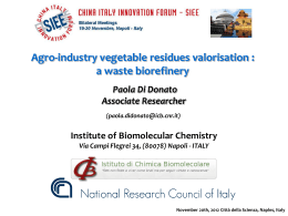 Agro-industry vegetable residues valorisation :a waste biorefinery