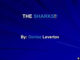 THE SHARKS!! By: Denise Levertov