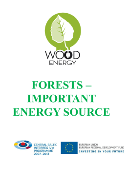 3. Forests - Important Energy Source