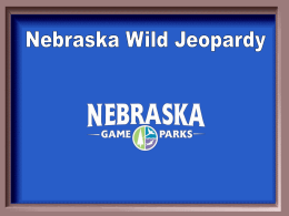 Wildlife Jeopardy