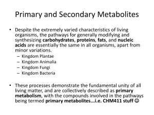 Secondary Metabolites and Building Blocks