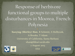 Response of herbivore functional groups to multiple