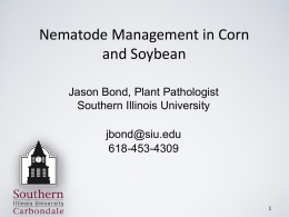 Nematodes - SIU Plant Pathology