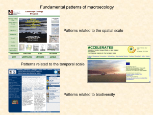 Fundamental relationships in macroecology