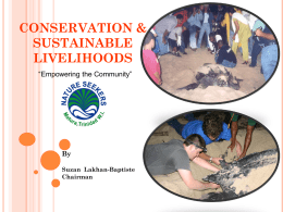 Turtle Conservation Programme