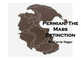 Permian: The Mass Extinction