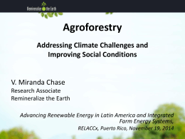 What is Agroforestry? - Remineralize the Earth