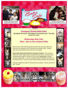 Flyer Template - Society for Companion Animals