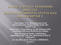 (GES) on Descriptor 3