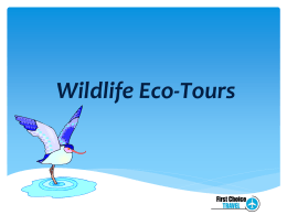 Eco-Tours - AVC Distance Education