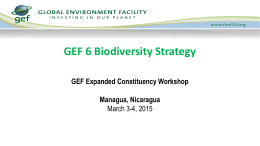 GEF 6 Biodiversity, Land degradation, Sustainable Forest