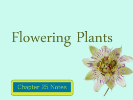 Flowering Plants - Herscher CUSD #2