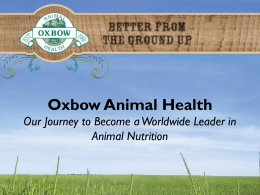 Oxbow Animal Health Our Journey to Become a
