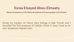 Esraa Elsayed Abou Elmaaty - The Six International Conference of