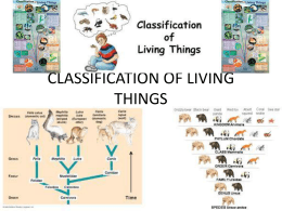 chapter 7 - classification of living things