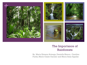 The Importance of Rainforests - i