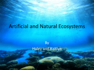 Artificial and Natural Ecosystems