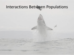 Interactions Between Populations